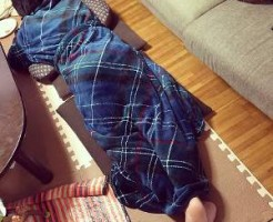 グルーニー着る毛布6