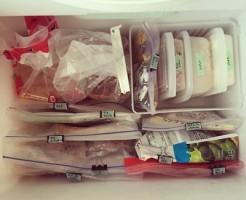 ジップロック冷凍庫収納
