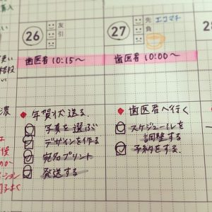 zibun-tetyo-monthly2